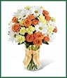 The Sweet Splendor Bouquet radiates cheer and well-wishes with every sun-filled bloom! Orange spray roses, yellow mini carnations, white traditional daisies and lush greens are brought together in a classic clear glass vase accented with a designer apricot plaid ribbon to create a bouquet set to brighten any day.