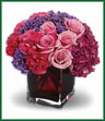Romance that stands all the tests of time is like an enchanted journey. This beautiful arrangement is a wonderful way to celebrate that love. Gorgeous dark pink hydrangea, pink roses and carnations, plus lavender statice are lovingly arranged in an  plum-colored cube vase. Vase may vary.