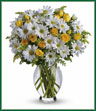 Celebrate the brightest of occasions with this cheerful bouquet of happy-faced daisies presented in a graceful, vase. Yellow roses and spray roses, white daisy spray chrysanthemums, solidago and pittosporum fill a lovely Inspiration vase. Amazingly pretty!