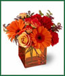 Sunrise, sunset, swiftly fly the days. So don't let another day go by without letting someone you know that you are thinking of them. This delightful arrangement will brighten anyone's morning, noon and night. Fiery orange roses, spray roses and gerberas plus red carnations and huckleberry, are arranged in an exclusive orange cube vase. This arrangement is bound to get glowing reviews and thank-yous! Color of vase may vary.